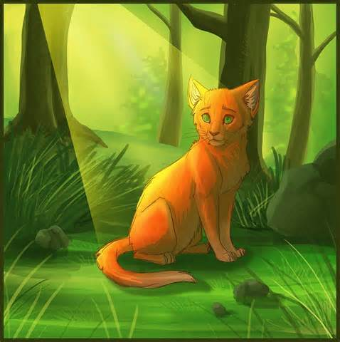 FIRESTAR IF THUNDERCLAN HE IS BEST