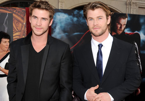 the handsome Hemsworth bros<3