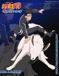 Does Kiba count???He's from Naruto and he can change in to a dog(look like his pet)