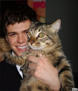 Matthew being cute with a cat <333333
