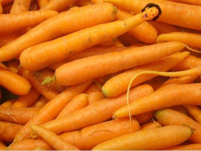 Rob Schneider is a carrot!! XD