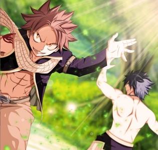 Natsu & Grey (Fairy Tail)