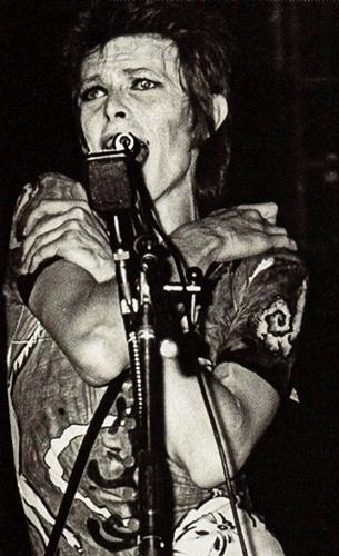 Ziggy Starfuck