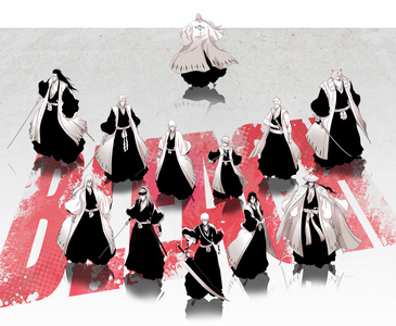 Bleach Shinigami Captains
