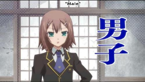 Hideyoshi Kinoshita from Baka To Test!! This IS a male. He has a twin sister, though. Her name's Yuuko. [Proof he's a he]