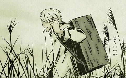1.Fullmetal Alchemist: Brotherhood 2.Hunter x Hunter 3.Mushishi (pic) 4.Code Geass 5.Death Note 6.Attack on Titan 7.Soul Eater 8.Guilty Crown 9.Gurren Lagann 10.Baccano