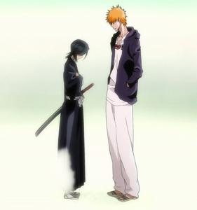 Rukia Disappear (Bleach)  Ichigo loose his shinigami powers......soooo he will loose the power to see shinigami....soooo this was the scene he loose his powers and shinigami rukia fades away.........he he eheh
