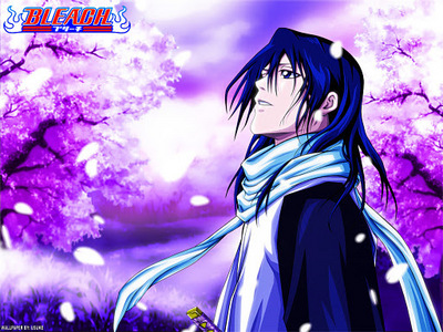 Kuchiki Byakuya (Bleach) Kuchiki Byakuya develops into this through the course of Bleach, going from being so cold as to swear to execute his sister with his bare hands to disobeying orders (!) and going to Hueco Mundo to save her. ...