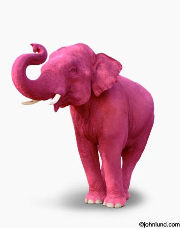 rosado, rosa elefante :)