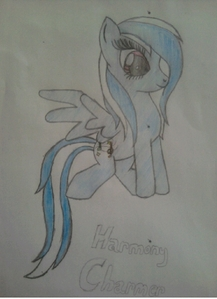 Harmony Charmer pony type: pegasus Cutie mark: Musik notes Mane color: blue and white Where would she work: a Musik store.