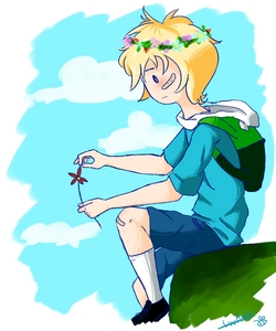 his currently known name in the دکھائیں is Finn the human. farmworld finn's name was Finn Mertens