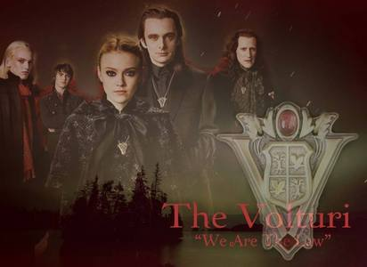 They are the rulers and they enforce the law. They are not just shitty little vamps but true kings. They have a purpose to do what they do. vampires wouldn't survive without laws, they would be noticed par humans and with their new machines - killed. The Volturi are good, not very good ou the best, but still good rulers.They have this job even though it's the reason why others may not like them.Somebody has to make the rules - they did good ones. So they're not just some aléatoire creepy vampires :)