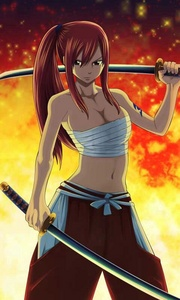 Erza Scarlet from Fairy Tail she has lots more armor lots!