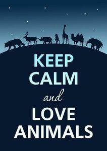 Keep Calm and 愛 Animals!!!!!