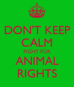 Save the animals!