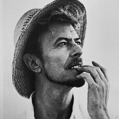 David <333