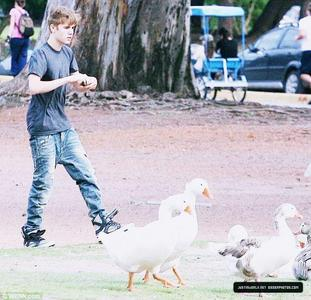 Justin with ducks.