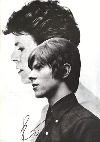 Bowie and Bowie <3