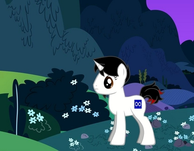 Name: Infinity What kind of pony? (Alicorn, Earth Pony, Pegasus, Unicorn): Unicorn What would your cutie mark be?: Infinity What color would your mane be?: Black and Red What would Du work at?: The Gates of Time and Space, Guarding the Time Stone and Weltraum Stone