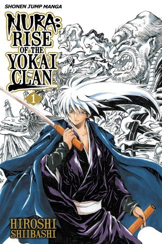 Here's six I can think of: Nura: Rise of the Yokai Clan (Picture) InuYasha/The Final Act High School DxD (Mainly since the main characters are Devils but still Demon but in higher power) Devil May Cry (That's a anime) Devil Lady Demon Lord Dante