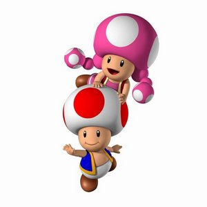 Oh look, it's Toad and Toadette!