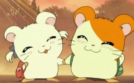 Hamtaro & Bijou c: