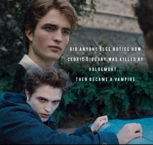 thanks to HP and Twilight,my babe is very well known<3