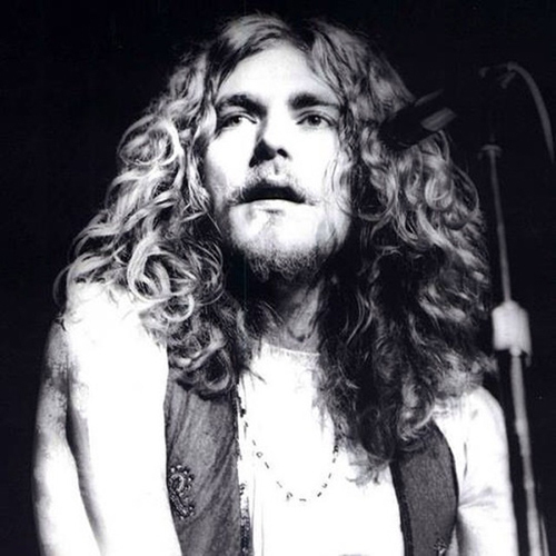 Robert Plant has awesome hair