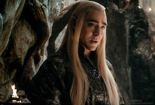 Thranduil and Thorin are my #1's. Thranny because he is a great fighter, a great charcter, everybody hates him, handsome...did I mention handsome? Thorin because he's a great leader, a great uncle, an amazing character (especially BOTFA), handsome...did I mention handsome? :D