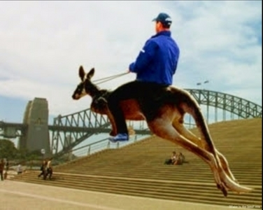 Australia, mate. Behold a totally legit picha of me on the way to school. Really. How could wewe doubt it?