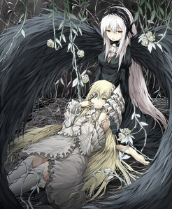 Kirakishou (White one) and her bigger sister Suigintou (Black one)