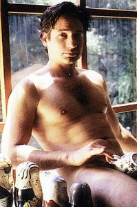 Any pic of David Duchovny makes my hari :-D