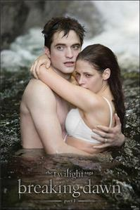 I have 5 posters on my wall.All posters are of Edward and Bella,from Twilight Saga.This is one of the posters I have<3
