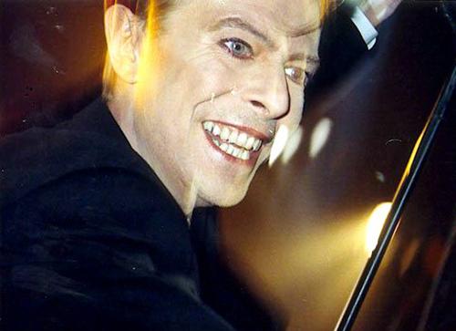 Bowie in black