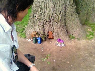 Lawrence Gowan - visiting the tree-folk wee-folk.