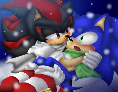 Yes, I am embarrassed to say I like and ship Sonadow. They are just so cute together. I read fanfictions about them two together. I watched movie comics about Sonadow. In fact, I don't tell anyone that I like and ship them. I am afraid of what people think about me so I hide things I like. Everyone should actually tell people that they like something because anda are not alone out there in the world.