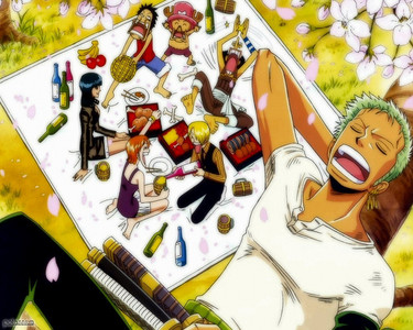 One Piece Strawhats on a picnic.........he he hehe