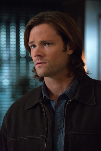Sam Winchester and has fabulous hair.