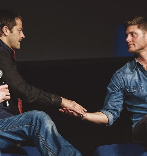 vlaamse gaai, jay and Misha-man <3