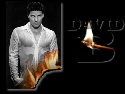 burning hot Boreanaz<3