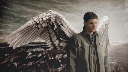he doesn't need the wings,because he already is an angel<3