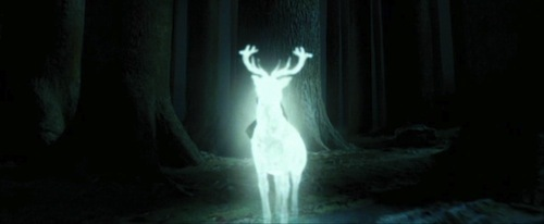 "Are Du sure this wasn't intended to be a Popquiz question? :p Harry's Patronus is a hirsch (a male deer). This is the same as his father's, which in turn stems from the fact that his Animagus form is a stag. Bonus fact: The incantation ""Expecto Patronum"" roughly translates from Latin as ""I await a protector""."