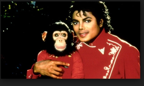 my fav is when I first watched thriller it had blowen my mind I was like wow that was ............... AWSOME! I loved the song the dance