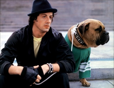 The Rocky star, Sylvester Stallone with his dog, Bunkus :)
