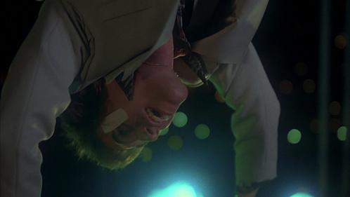Joey posing upside down