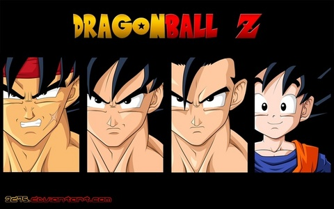 Bardock's family ( Bardock is Goku's father)