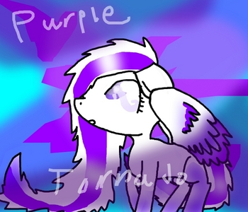 """name : Purple Tornado age : 15 gender : Female race : pegusuas (I don't know how to spell) likes : weather dislikes : Dresses বন্ধু : রামধনু dash, Stormwalker, and Applejack. family : unknown cutiemark : tornado with a purple streak through it. backstory : When Purple Tornado was just a baby a huge storm came দ্বারা while her parents were carrying her home. Her parents searched high and low but could not find her. She was dropped over a farm, and a farm টাট্টু came and took care of her. That টাট্টু was applejack. As years came her """"sister"""" ,applebloom, got her cutiemark after harvesting crops. Purple tornado was sad দ্বারা this so the আপেল family went to cloudsdale. She wanted to race somepony because she was interested in their speed. So while she was training she did বৃত্ত laps, and she went super fast that she strated a huge tornado, and if আপনি watched the episode """"Hurrican Fluttershy"""", আপনি would know making a tornado takes lots of wingower. Her cutiemark appeared as a tornado with a purple streak going through it, and the purple streak represents her."""