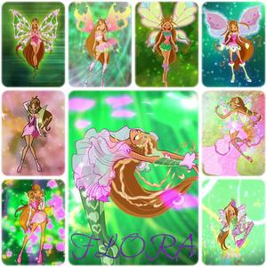 According to my opinion: 1.Flora 2.Stella 3.Musa 4.Aisha/Layla 5.Bloom 6.Tecna