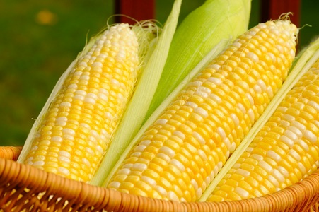 Y'all can make all the jokes about the Midwestern United States 당신 want. I'm gonna say sweet corn.