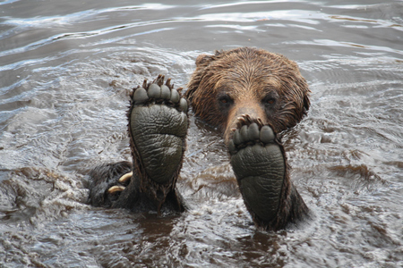 I didn't wear shoes today, I just went bearfoot